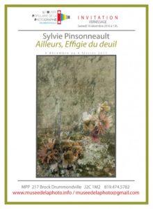 carton-sylvie-pinsonneault