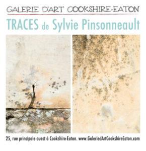 Carton-Sylvie-Coockshire